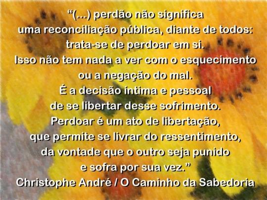 Citação - Christophe André - O caminho da sabedoria - Perdão