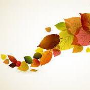 cropped-folhas-de-outono-2